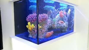 custom fish tanks fire pit with glass chips custom decor with glass chips custom fish tanks houston