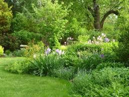 Small Picture Correct irrigation design for perennialshrub border
