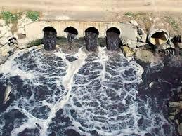 2 bin 600 sanayi tesisinin atıkları Ergene Nehri'ne akıyor