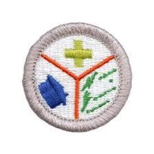 Emergency Preparedness Merit Badge Chart Emergency Preparedness Merit Badge Emblem