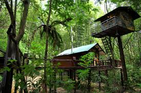 5 Tree House Hotels  Asia Travel And Leisure Guides For Hotels Treehouse In Thailand