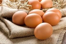 Kết quả hình ảnh cho giá trị dinh dưỡng từ trứng