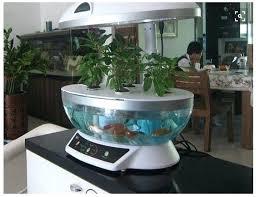 fish tank hydroponic garden nice aquarium retrofit indoor fish tank hydroponic growing