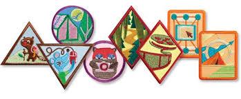 Junior girl scout badge requirements online