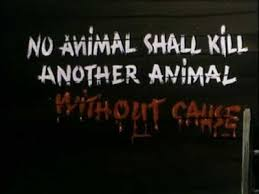 Animal Farm Quotes