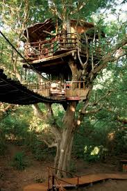 TreeHouse PointTreehouse Builder Pete Nelson