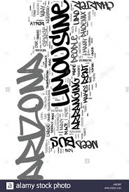 Another Word For Rent Why Rent An Arizona Limousine Or Arizona Charter Bus Text Word Cloud