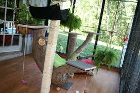 Outdoor CATIO Feature