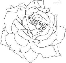 Small Picture Rose Flower Coloring Page