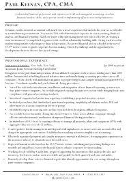 sample controller resume sample resume for controller assistant example of assistant  controller resume