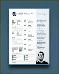 Pages Cv Template Free Of 2 Page Resume Talktomartyb