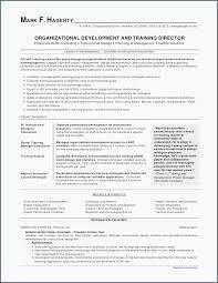 Best Looking Resume Format Classy Job Resume Example Best Resume Examples 28d Good Looking Resume