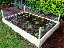 diy garden box ideas nice simple custom raised beds with rabbit fence for small of