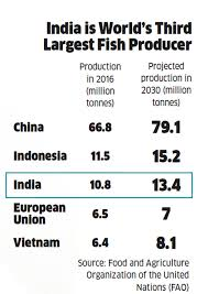 Seafood Yield Chart Fish Farms To Produce Nearly Two Thirds Of Indias Fish