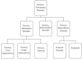 Sensory Processing Disorder Spd Sensory Integration