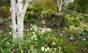 Small Picture Garden Design Garden Design with Woodland Gardens Bloom Garden