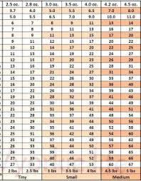 Average Kitten Weight Chart Kg Www Bedowntowndaytona Com