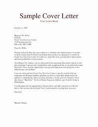 Child Care Resume Samples Inspirational Resume Mail Format Sample