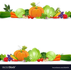 Vegetable Border Design Isolated Seamless Border With Vegetables And Herbs