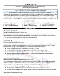 Sales & Business Executive Resume Sample