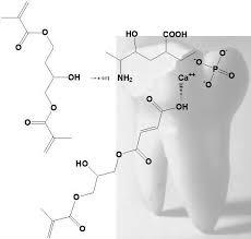 Полимеризуемые стоматологические адгезивы и композиты Обзор