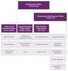 Whs Organization Chart 64 Complete Deewr Organisational Chart