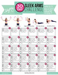 30 day sleek arms challenge doing this arm challenge at the moment i can feel it working i love ilates