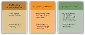 self managed teams peoi organizational behavior 1
