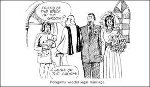 polygamy essays argumentative essay on polygamy leranas