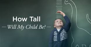 How Tall Will My Child Be Predicting Height