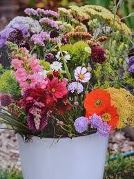 Small Picture 71 best Snippets Flower Cutting Garden images on Pinterest