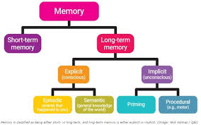 Types Of Memory Chart Ram Types Chart Related Keywords Suggestions Ram Types