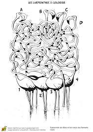 Coloriage Labyrinthe Des Flamants Roses Sur Hugolescargot Com