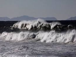 Australia confirmed a marine tsunami threat to lord howe island, a marine reserve february 10, 2021 21:30. C1mq9lpgkmziam