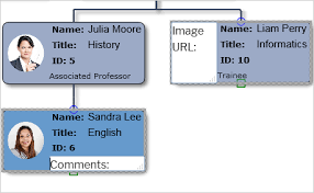 Org Chart Wordpress Plugin Hierarchies Interactive