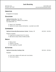 Sample Resume With No Work Experience Template Little Words New Resume Ideas For No Work Experience