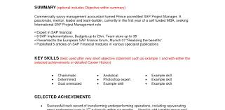 Resume Profile Statement Tech Resume Example