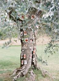 tree decorations for weddings elegant best 25 outdoor tree decorations ideas on