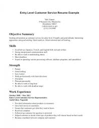 Resume For Beginners Awesome Resume Summary Examples For Beginners Best Professional Resume