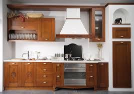 Modern Wood Kitchen Cabinets Kitchen Wooden Kitchen Cabinets With Granite Countertops Design