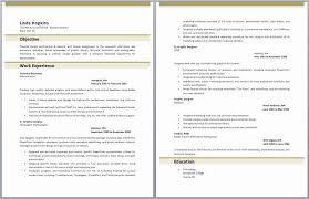 Professional Summary Resume Examples – Professional Summary Resume ...