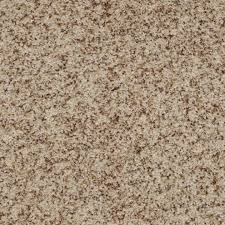 Small Picture 9 best Shaw Carpet Neutral Colors images on Pinterest Shaw
