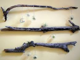 10 tree branches doubling as wall art 35 of the world s coolest diy driftwood vintage decorations homesthetics decor 13