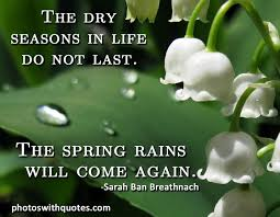 Seasons Of Life Quotes Adorable Quotes About Seasons Of Life 48 Quotes