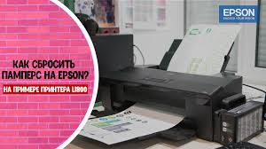 Как сбросить памперс на Epson? • FilGroup