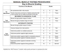 Grading System Chart Mmt Grades Sada Margarethaydon Com