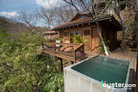 The 16 Best Tree House Hotels  Oystercom Hotel ReviewsTreehouse Accommodation