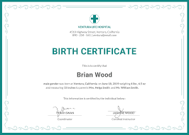 Certificate Of Birth Template Free Birth Certificate Template In PSD MS Word Publisher 17