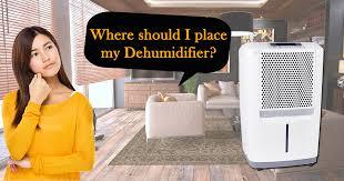 place my dehumidifier basement