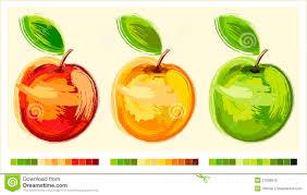 Pomme Trois De Dessin Illustration De Vecteur Image Du Retrait